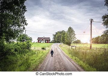 男の子, 歩くこと, 若い, 環境, 道, 田園, 下方に
