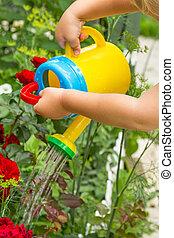 男の子, 花, 水まき