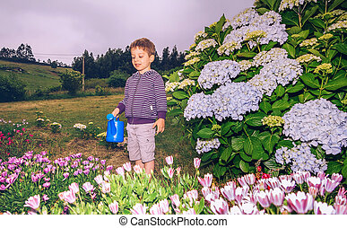 男の子, 花, 水まき, 庭, 幸せ