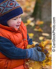 男の子, 葉, 届く, 秋