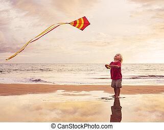 男の子, 遊び, 凧, 若い