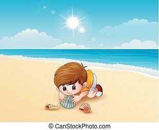 男の子, 遊び, a, 海の貝, ビーチにおいて