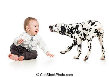 男の赤ん坊, 子犬, 犬, 遊び