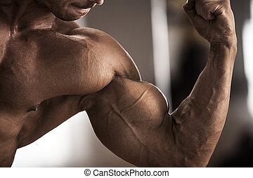 男性的運動員, 顯示, 二頭肌
