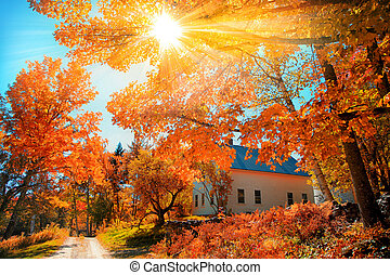 町, イギリス\, 秋葉っぱ, 教会, 小さい, 新しい, 典型的