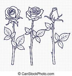 畫, 略述, 花, 手, 玫瑰