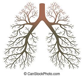 病人, 肺