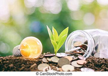 發光燈泡, 由于, 小, 植物, 生長, 從, 土壤, 以及, 錢, 硬幣, 在, the, 玻璃罐子