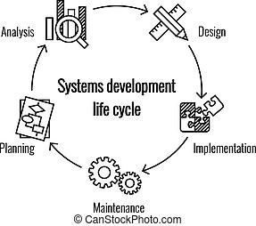 發展, 系統, 週期, 生活
