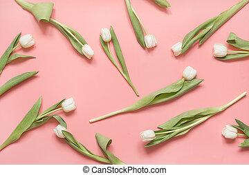 白いチューリップ, 取り決められた, 上に, millenial, pink., 上, ビュー。