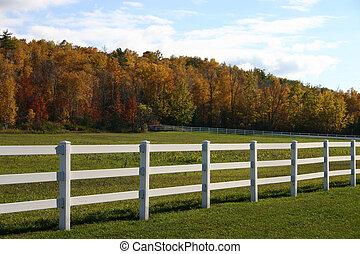 白いフェンス