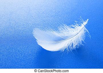 白い羽毛, 上に, 青