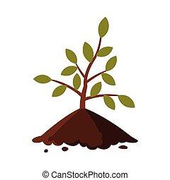 白い背景, 地面, 苗木, 若い, 平ら, スタイル, ベクトル, 木, イラスト