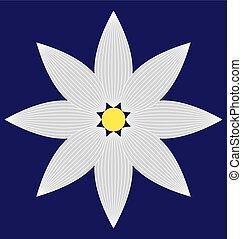 白い花, イメージ
