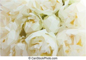 白い花, シャクヤク