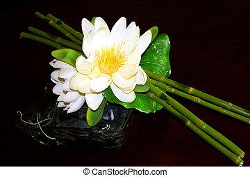 白い花, 整理