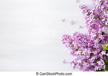 白い花, 背景, 美しい, ライラック