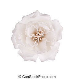白い花, 隔離された