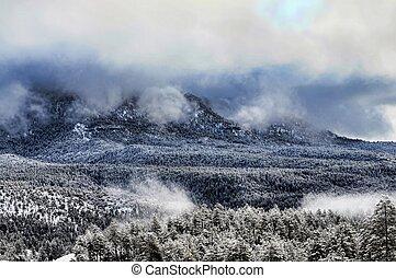 白い 山, 冬