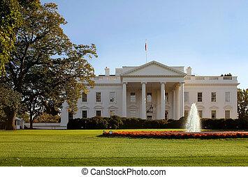 白色的房子