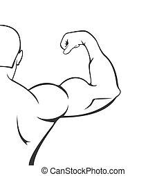 白色, 侧面影象, 背景, 肌肉, 人