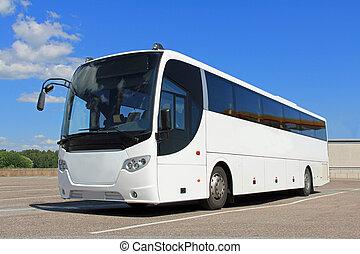 白色, 公共汽車, 在, 夏天