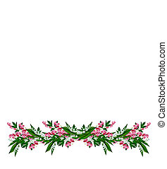 白色, 山谷, 百合花, 被隔离, 背景