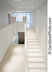 白色, 楼梯, 在中, 专有权, 大厦