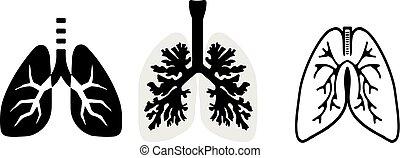 白色, 肺, 背景, 图标
