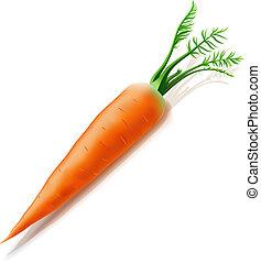 白色, 胡蘿卜, 被隔离, 背景