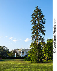 白色, 華盛頓特區, 房子