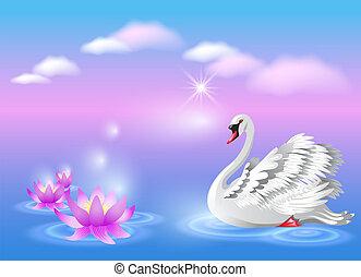 白鳥, ユリ
