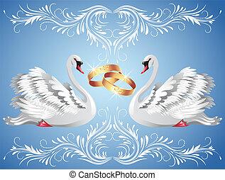 白鳥, リング, 2, 結婚式