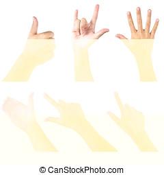 白, セット, 隔離された, 手の 印