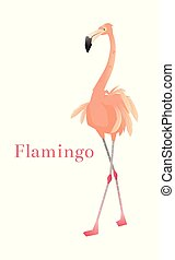 白, バックグラウンド。, 海, 野生, エキゾチック, bird., フラミンゴ, ピンク, 動物群, 隔離された, イラスト, ベクトル, illustration., 動物, 自然