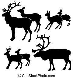 白, ベクトル, シルエット, 背景, deers