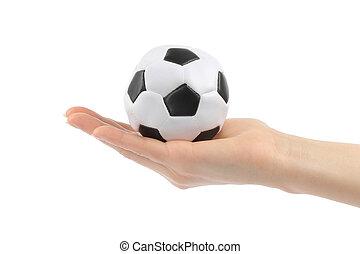 白, 女, 背景, フットボール, 手