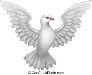 白, 概念, 鳩