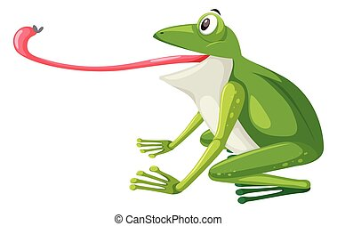 白, 緑の背景, カエル