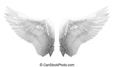 白, 翼, 天使, 隔離された