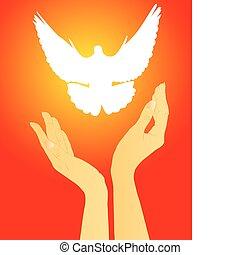 白, 解放, 鳩, 手
