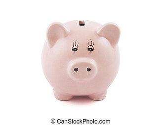 白, 銀行, 小豚, 背景