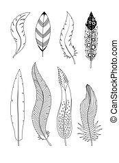 白, 隔離された, コレクション, インク, イラスト, 背景, feathers., 引かれる, 手