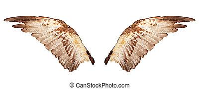 白, 隔離された, 翼, 2