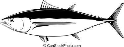 白, albacore, fish, マグロ, 黒