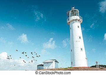 白, egmont, 美しい, 岬, 高い, lighthouse.