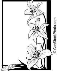百合花, 框架, 黑色