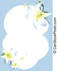 百合花, 框架, copyspace, 白色