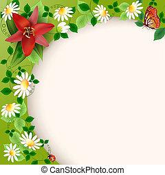 百合花, 雛菊, 背景