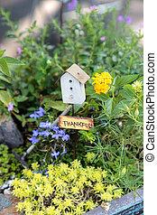 盆栽, ミニ, セット, 庭, の上, 現場, プランター